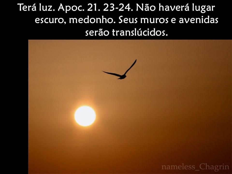 Terá luz. Apoc. 21. 23-24. Não haverá lugar escuro, medonho. Seus muros e avenidas serão translúcidos.