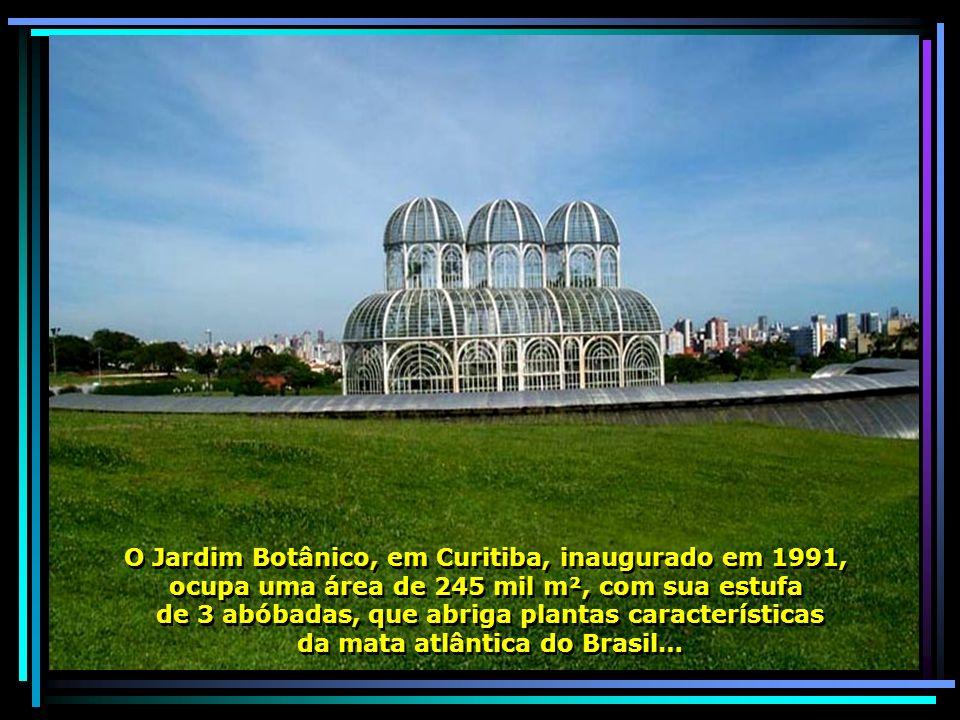 O Jardim Botânico, em Curitiba, inaugurado em 1991, ocupa uma área de 245 mil m², com sua estufa de 3 abóbadas, que abriga plantas características da mata atlântica do Brasil… O Jardim Botânico, em Curitiba, inaugurado em 1991, ocupa uma área de 245 mil m², com sua estufa de 3 abóbadas, que abriga plantas características da mata atlântica do Brasil…