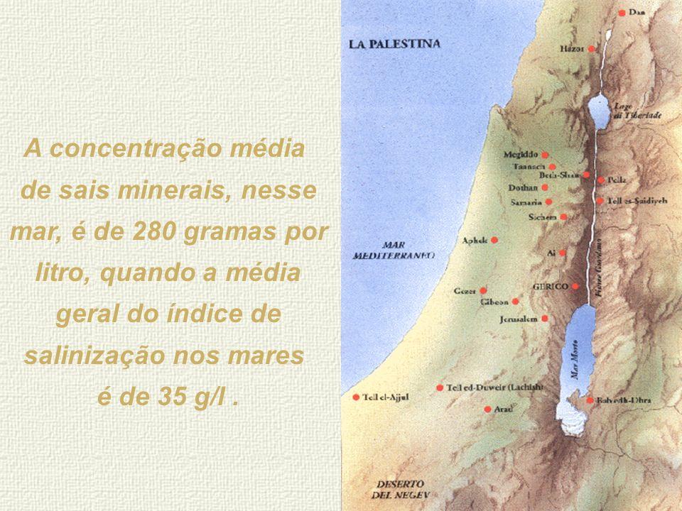 Mar Morto As águas do Mar Morto têm uma percentagem de sal que não tem comparação com nenhuma concentração de água salgada existente em qualquer lugar
