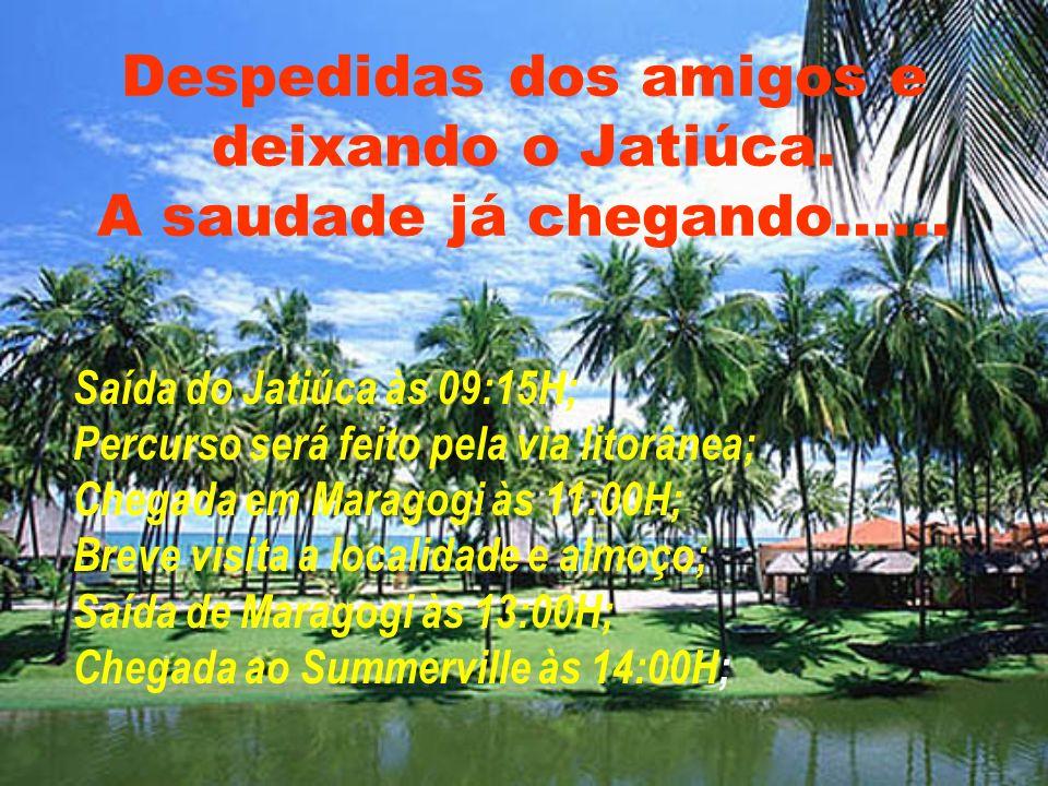 Maragogi segundo pólo turístico do estado de Alagoas, fica entre Maceió e Recife a aproximadamente 125 Km. de cada uma. Desde Maceió de carro pela AL-
