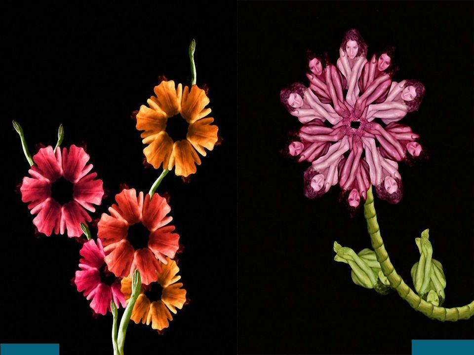 Flores ou corpos humanos?