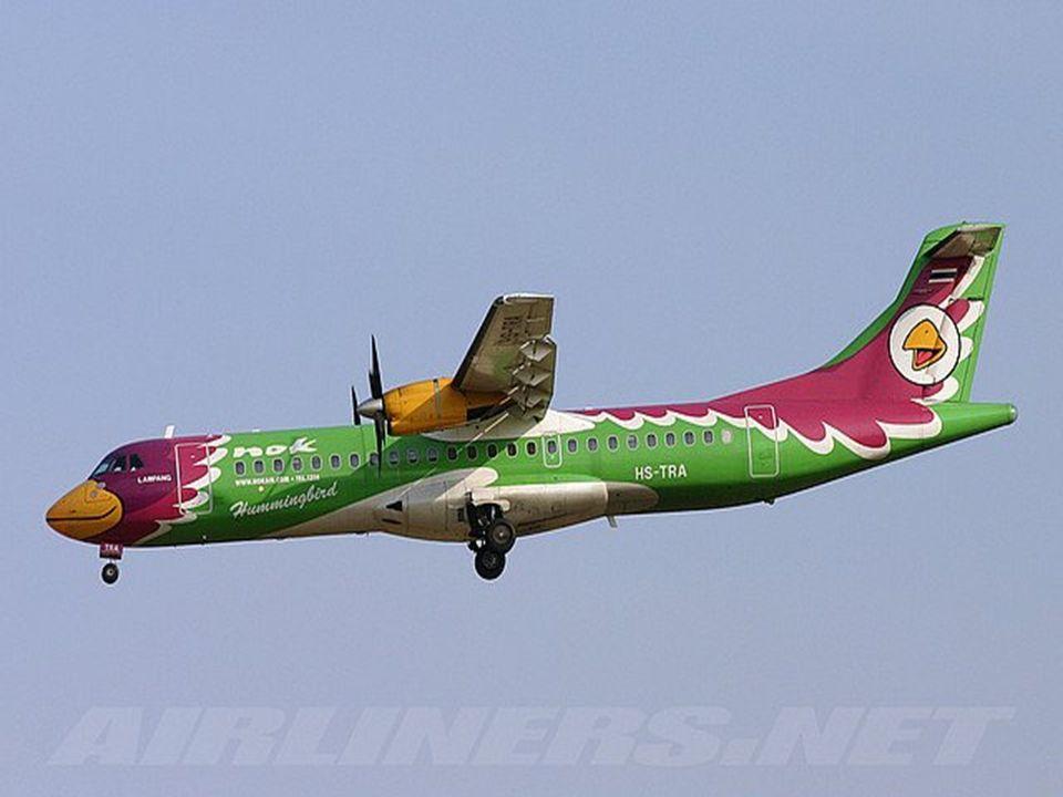 Pássaro ou avião?