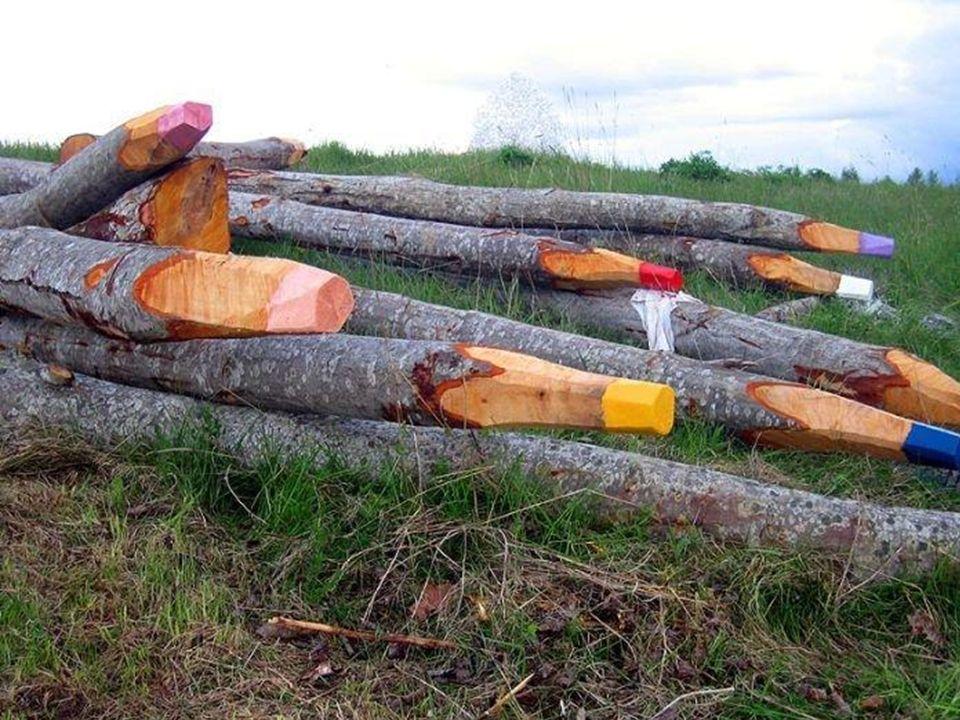 Lápis de cor ou troncos?