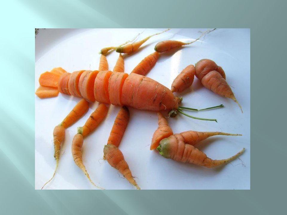 Cenoura ou lagosta?