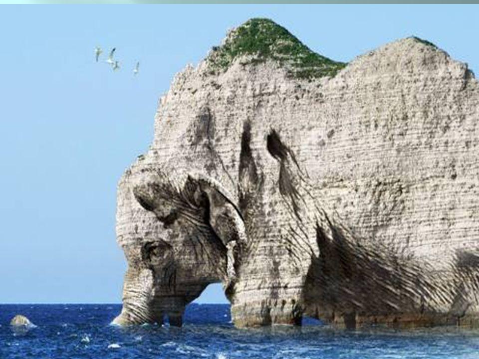 Elefante ou rochedo?
