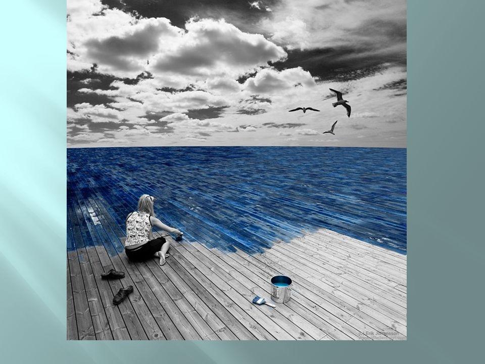 Chão ou mar?