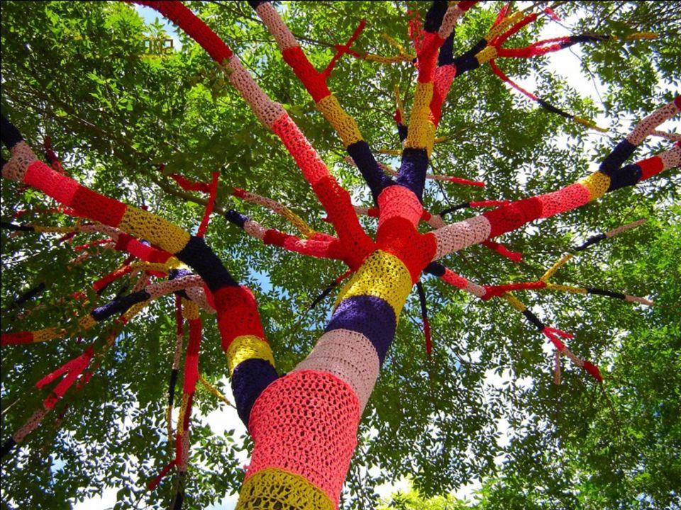 Árvore ou lã?
