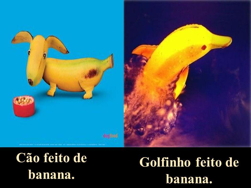 Peixes feitos com couve galega.