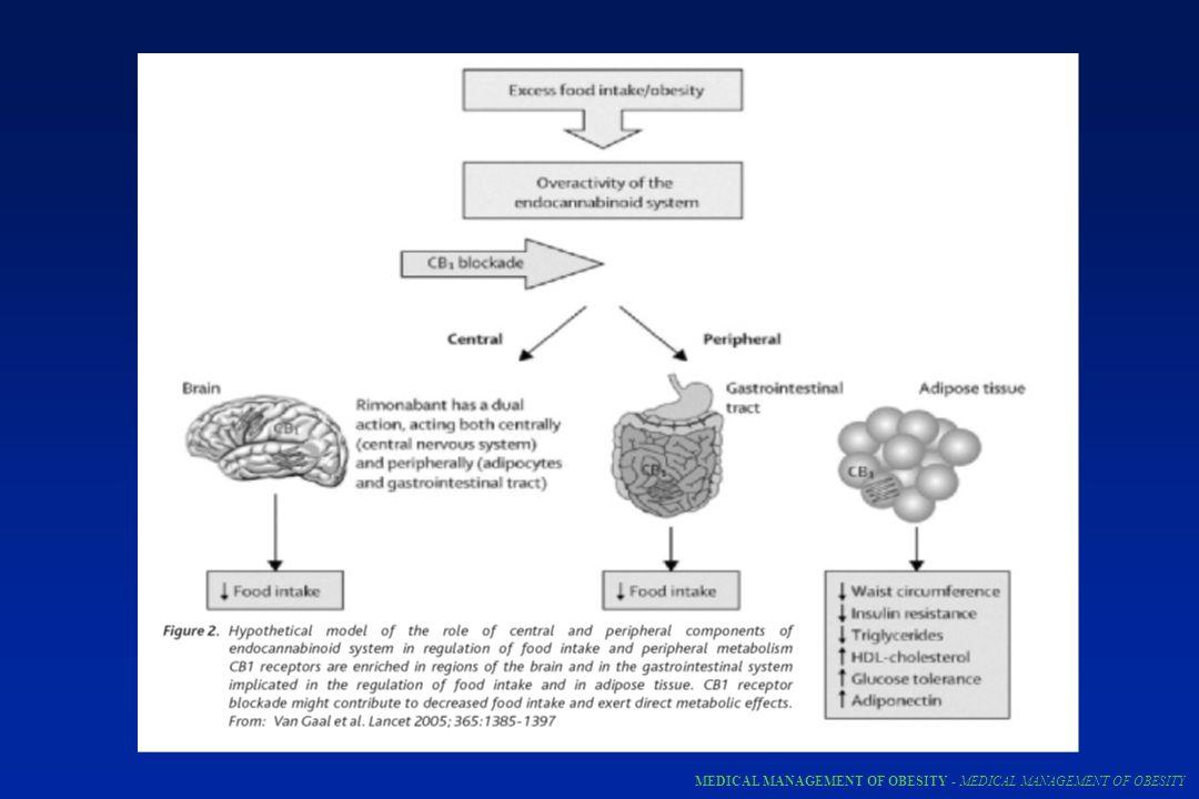 MEDICAL MANAGEMENT OF OBESITY - MEDICAL MANAGEMENT OF OBESITY