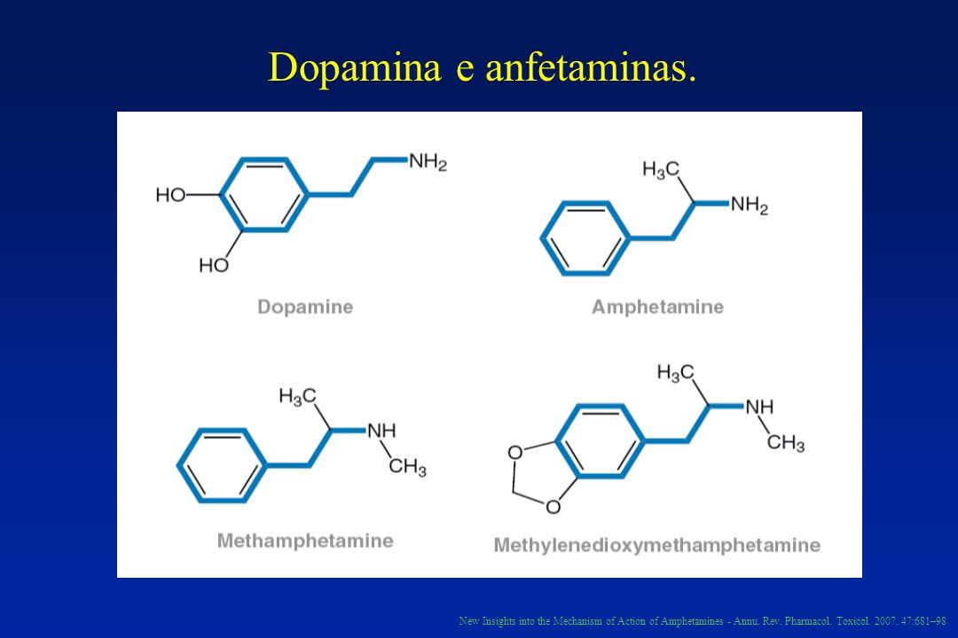 Dopamina e anfetaminas.New Insights into the Mechanism of Action of Amphetamines - Annu.