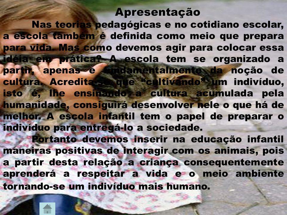 Animais abandonados Muitos animais são abandonados diariamente, adultos e filhotes.