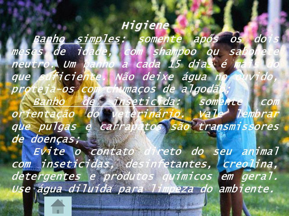 Vermifugação e vacinação Cães: vacina anti-rábica a partir dos 4 meses.