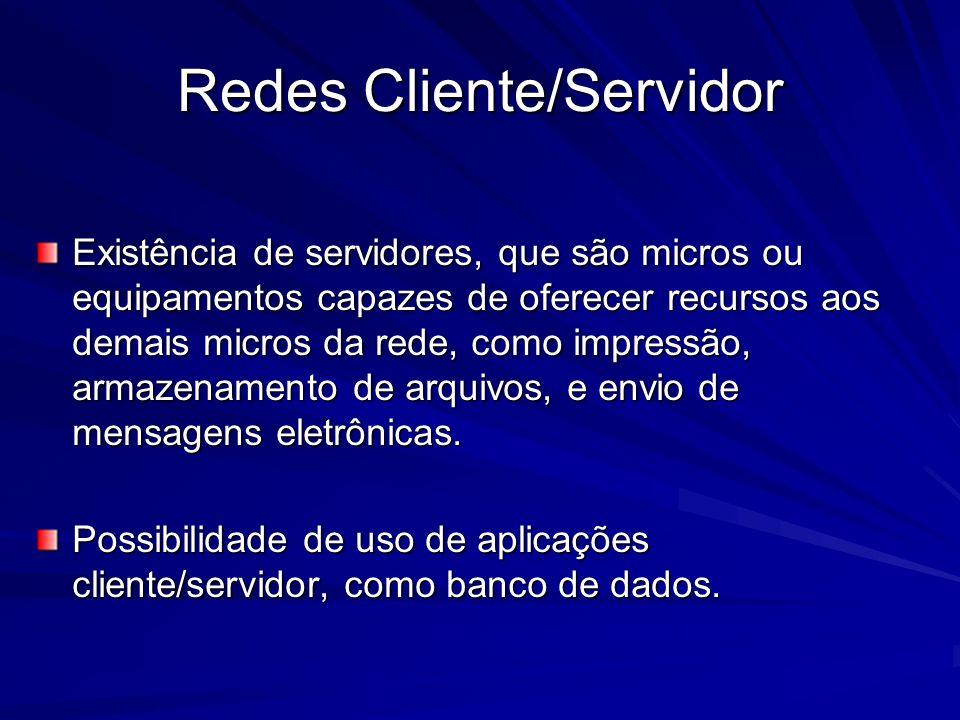 Existência de servidores, que são micros ou equipamentos capazes de oferecer recursos aos demais micros da rede, como impressão, armazenamento de arqu