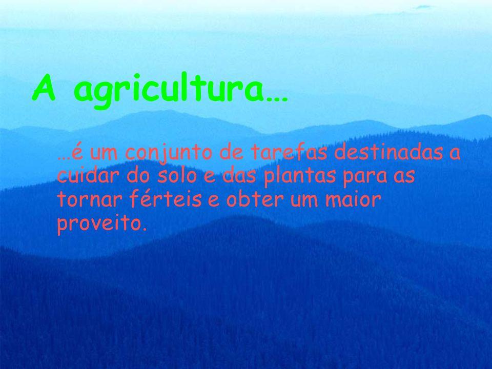 A agricultura… …é um conjunto de tarefas destinadas a cuidar do solo e das plantas para as tornar férteis e obter um maior proveito.