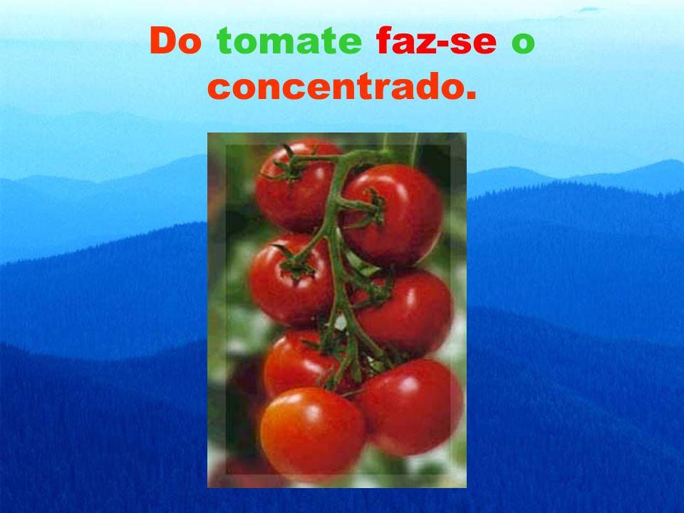 Do tomate faz-se o concentrado.