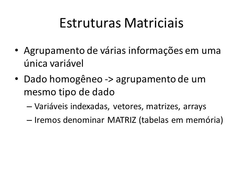 Estruturas Matriciais Agrupamento de várias informações em uma única variável Dado homogêneo -> agrupamento de um mesmo tipo de dado – Variáveis indexadas, vetores, matrizes, arrays – Iremos denominar MATRIZ (tabelas em memória)