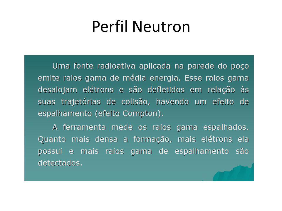 Perfil Neutron