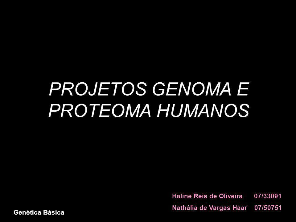 PROJETOS GENOMA E PROTEOMA HUMANOS Haline Reis de Oliveira 07/33091 Nathália de Vargas Haar 07/50751 Genética Básica
