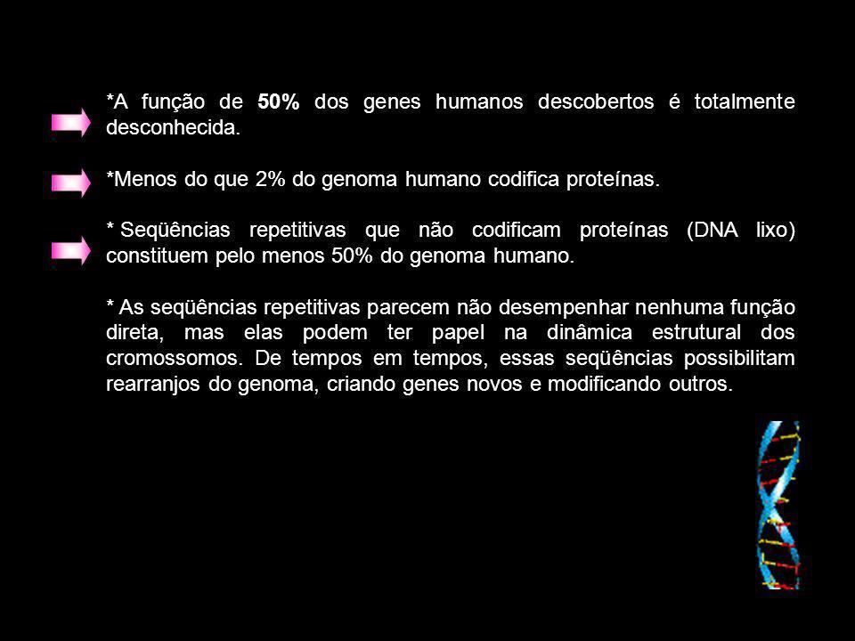 *A função de 50% dos genes humanos descobertos é totalmente desconhecida. *Menos do que 2% do genoma humano codifica proteínas. * Seqüências repetitiv