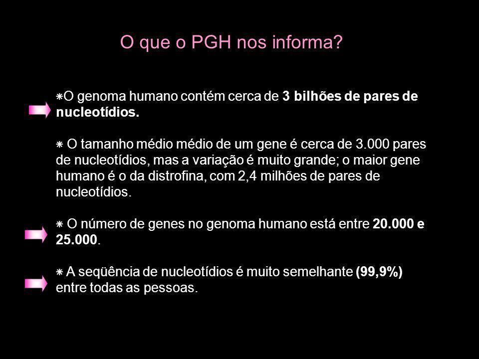 ٭O genoma humano contém cerca de 3 bilhões de pares de nucleotídios. ٭ O tamanho médio médio de um gene é cerca de 3.000 pares de nucleotídios, mas a