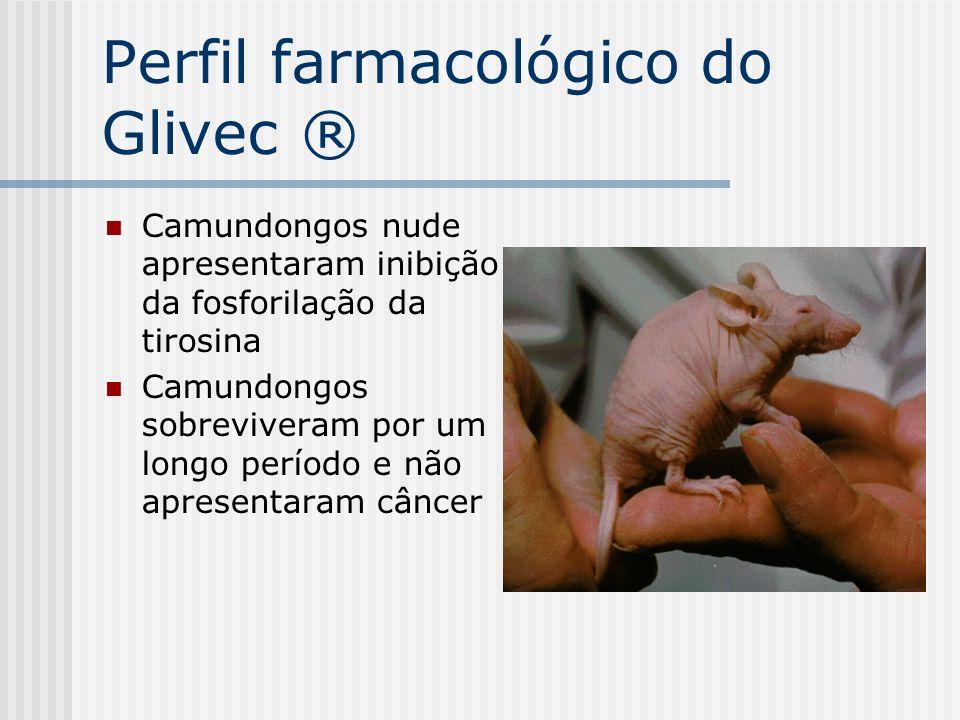 Perfil farmacológico do Glivec ® Camundongos nude apresentaram inibição da fosforilação da tirosina Camundongos sobreviveram por um longo período e nã