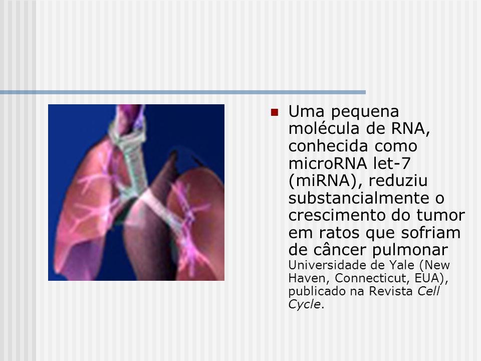Uma pequena molécula de RNA, conhecida como microRNA let-7 (miRNA), reduziu substancialmente o crescimento do tumor em ratos que sofriam de câncer pul