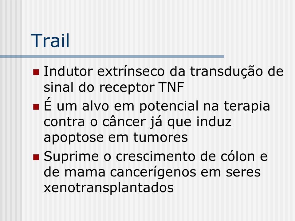 Trail Indutor extrínseco da transdução de sinal do receptor TNF É um alvo em potencial na terapia contra o câncer já que induz apoptose em tumores Sup