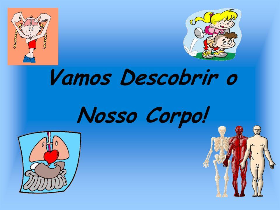 O Nosso Corpo O corpo humano é constituído por: Cabeça Tronco Membros
