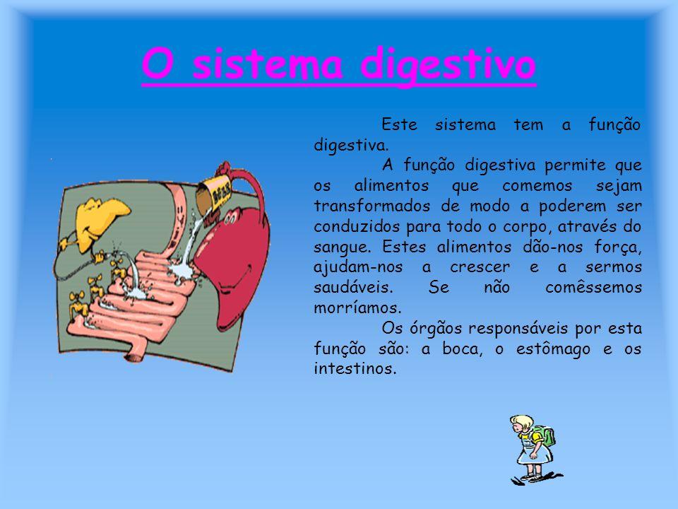 O sistema digestivo Este sistema tem a função digestiva. A função digestiva permite que os alimentos que comemos sejam transformados de modo a poderem