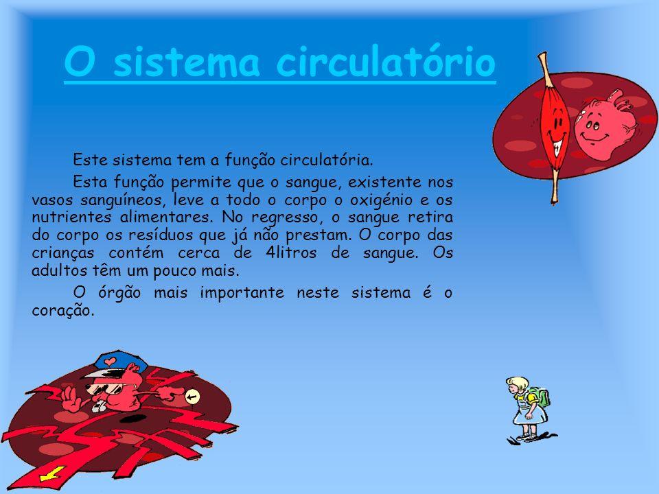O sistema circulatório Este sistema tem a função circulatória. Esta função permite que o sangue, existente nos vasos sanguíneos, leve a todo o corpo o