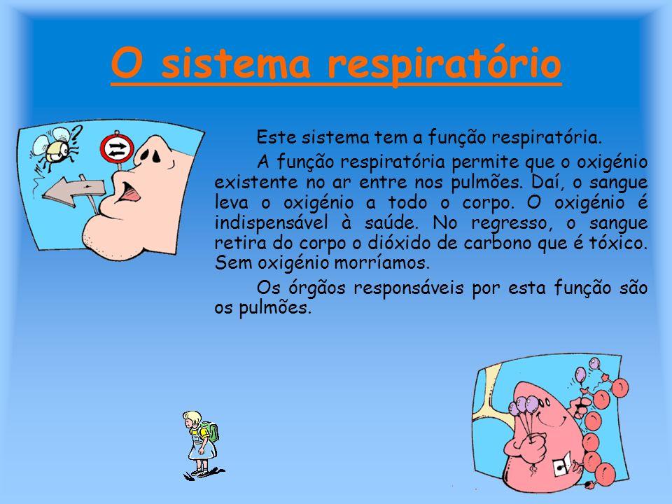 O sistema respiratório Este sistema tem a função respiratória. A função respiratória permite que o oxigénio existente no ar entre nos pulmões. Daí, o