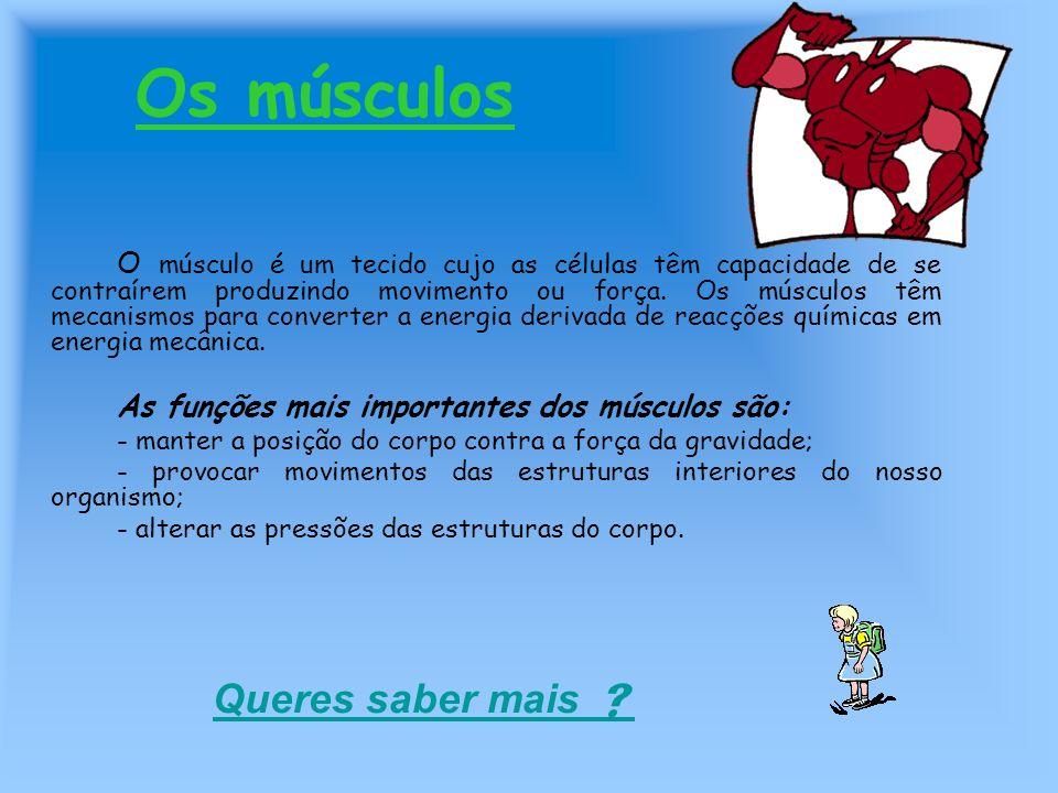 Os músculos O músculo é um tecido cujo as células têm capacidade de se contraírem produzindo movimento ou força. Os músculos têm mecanismos para conve