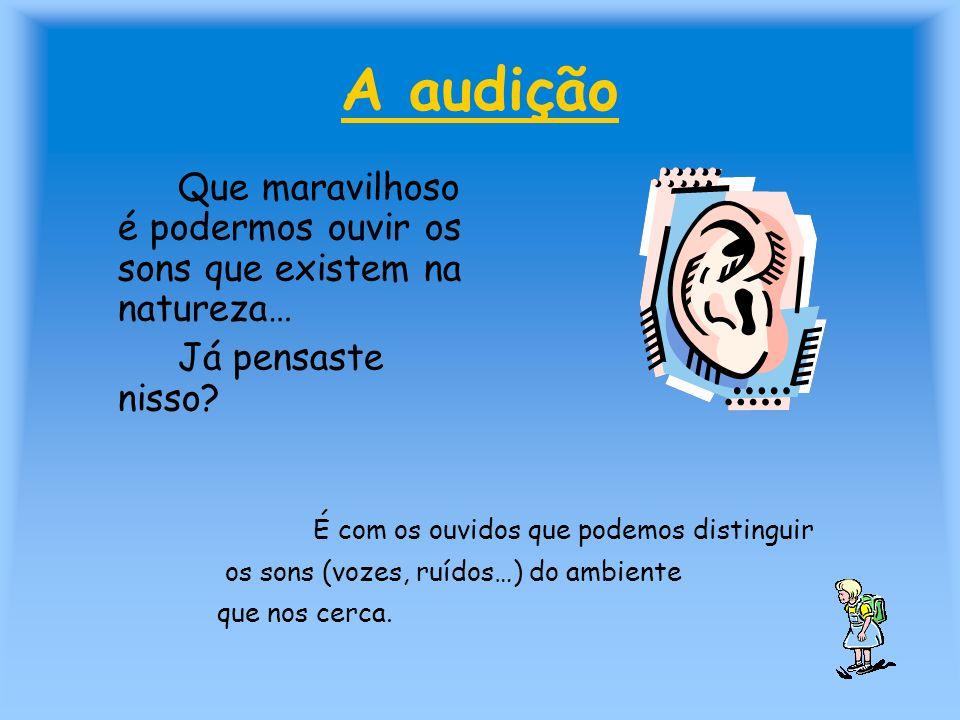 A audição Que maravilhoso é podermos ouvir os sons que existem na natureza… Já pensaste nisso? É com os ouvidos que podemos distinguir os sons (vozes,