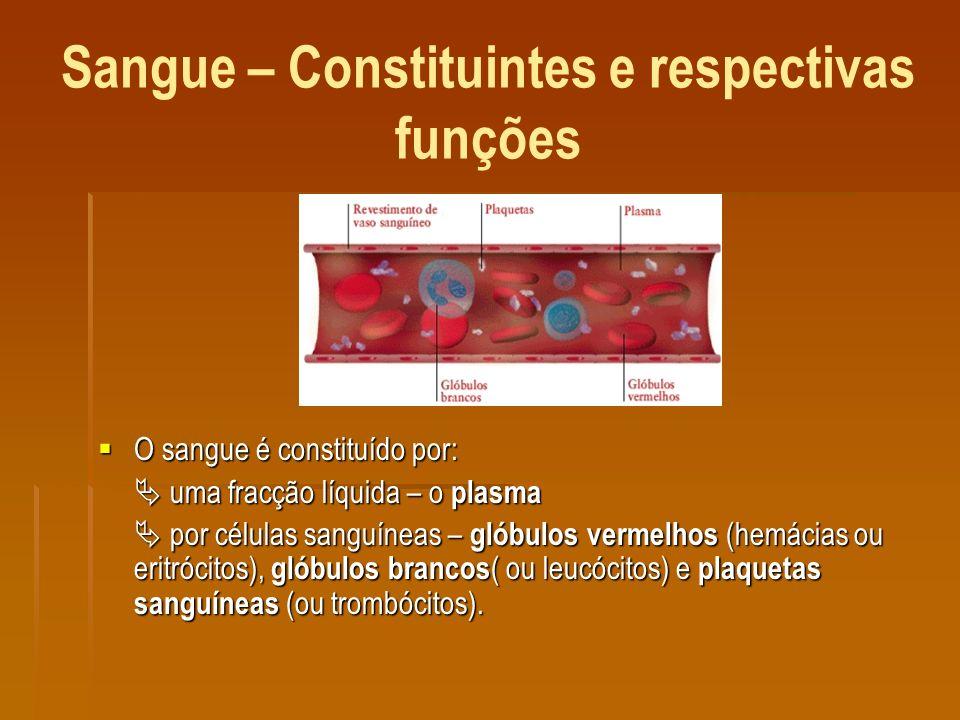 Sangue – Constituintes e respectivas funções O sangue é constituído por: O sangue é constituído por: uma fracção líquida – o plasma uma fracção líquida – o plasma por células sanguíneas – glóbulos vermelhos (hemácias ou eritrócitos), glóbulos brancos ( ou leucócitos) e plaquetas sanguíneas (ou trombócitos).
