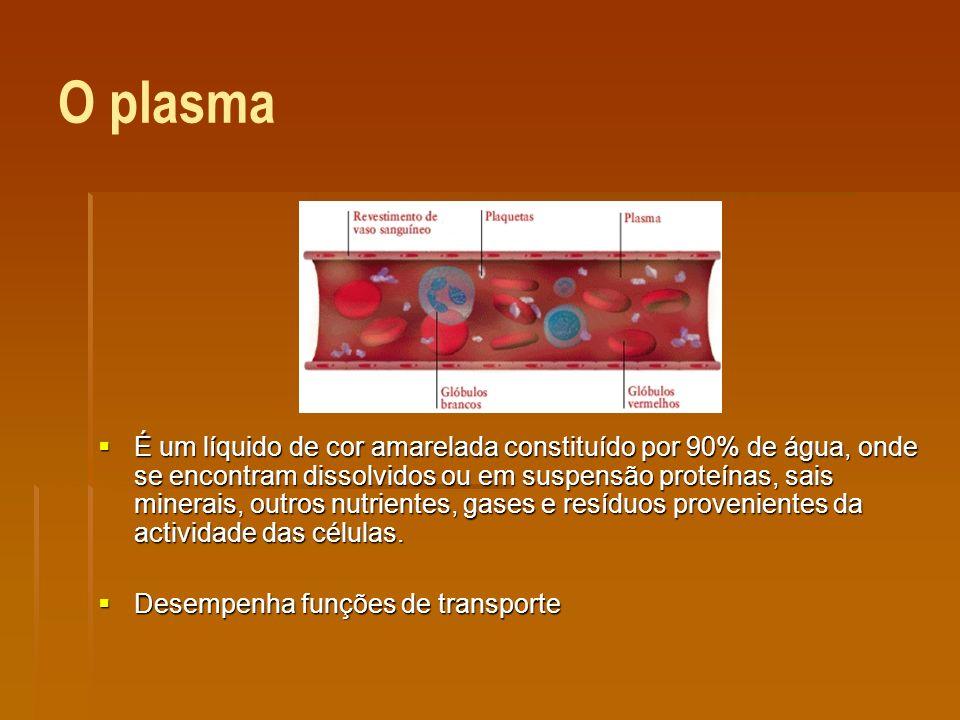 O plasma É um líquido de cor amarelada constituído por 90% de água, onde se encontram dissolvidos ou em suspensão proteínas, sais minerais, outros nutrientes, gases e resíduos provenientes da actividade das células.