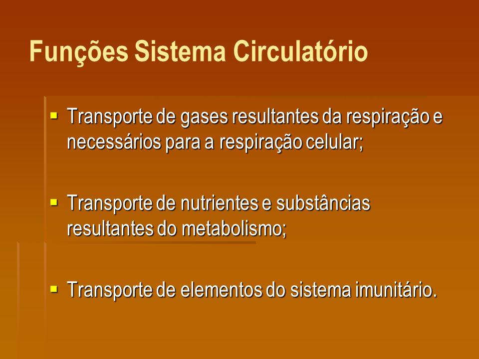 Funções Sistema Circulatório Transporte de gases resultantes da respiração e necessários para a respiração celular; Transporte de gases resultantes da respiração e necessários para a respiração celular; Transporte de nutrientes e substâncias resultantes do metabolismo; Transporte de nutrientes e substâncias resultantes do metabolismo; Transporte de elementos do sistema imunitário.