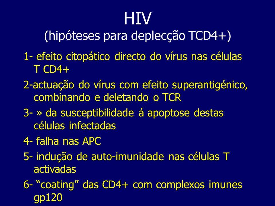 HIV (hipóteses para deplecção TCD4+) 1- efeito citopático directo do vírus nas células T CD4+ 2-actuação do vírus com efeito superantigénico, combinan