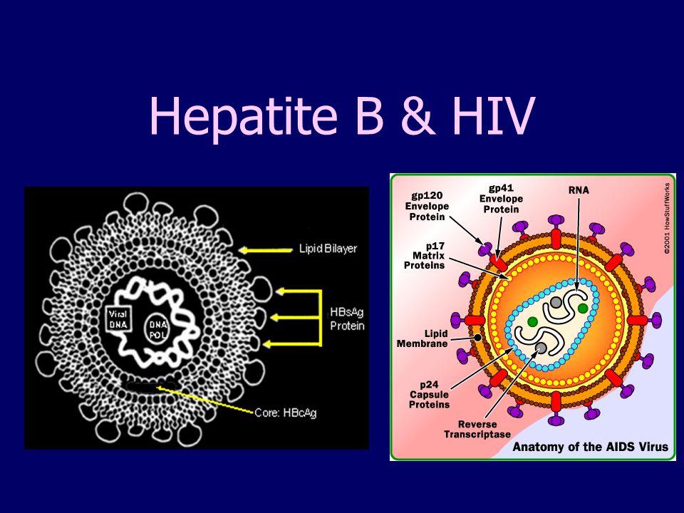 Hepatite B & HIV