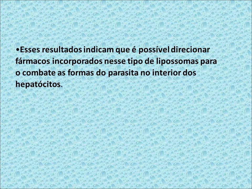 Esses resultados indicam que é possível direcionar fármacos incorporados nesse tipo de lipossomas para o combate as formas do parasita no interior dos