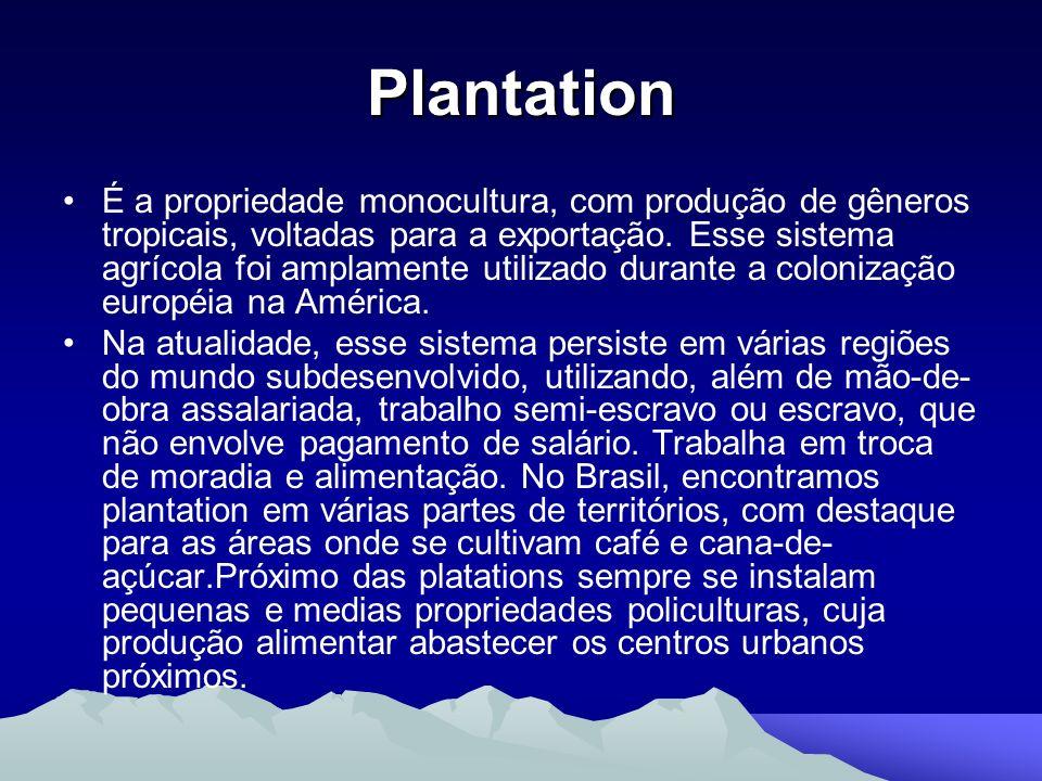 Plantation É a propriedade monocultura, com produção de gêneros tropicais, voltadas para a exportação. Esse sistema agrícola foi amplamente utilizado