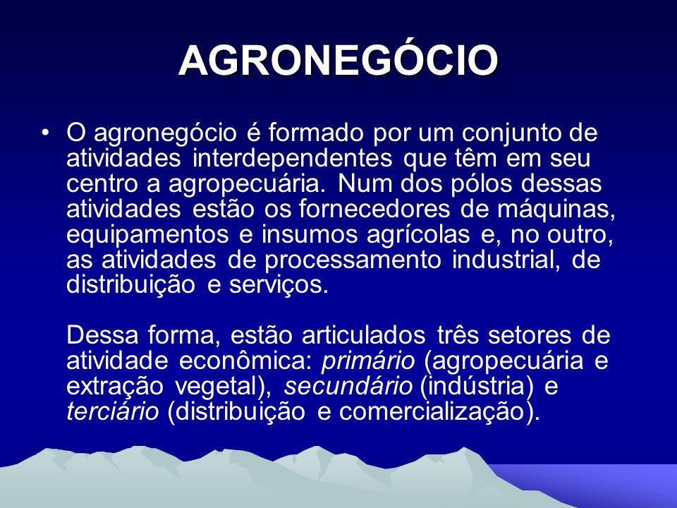 AGRONEGÓCIO O agronegócio é formado por um conjunto de atividades interdependentes que têm em seu centro a agropecuária. Num dos pólos dessas atividad