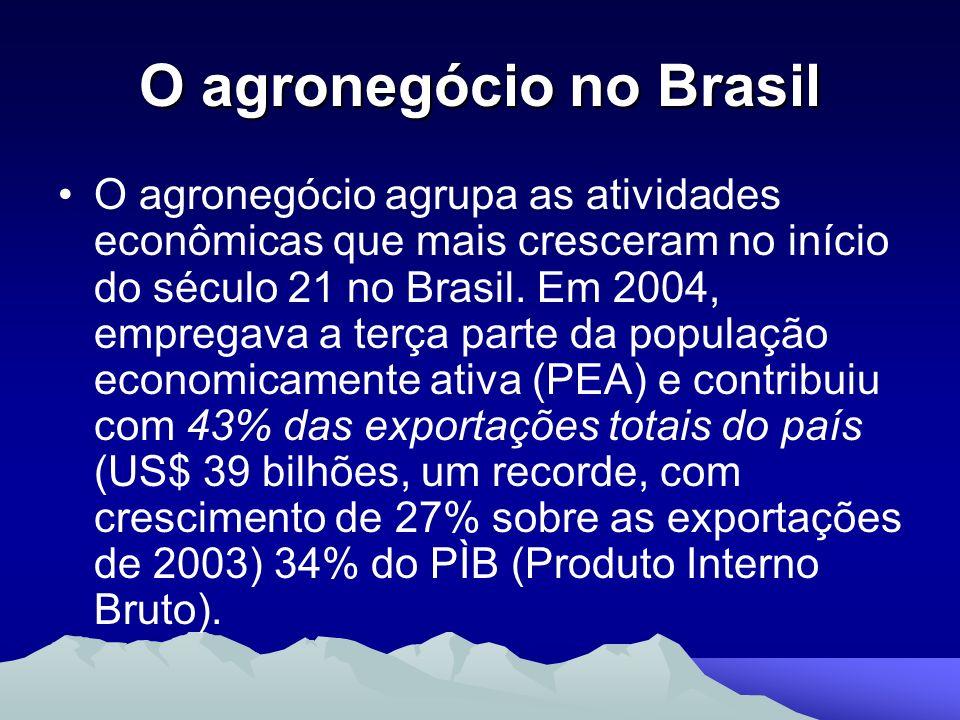 O agronegócio no Brasil O agronegócio agrupa as atividades econômicas que mais cresceram no início do século 21 no Brasil. Em 2004, empregava a terça