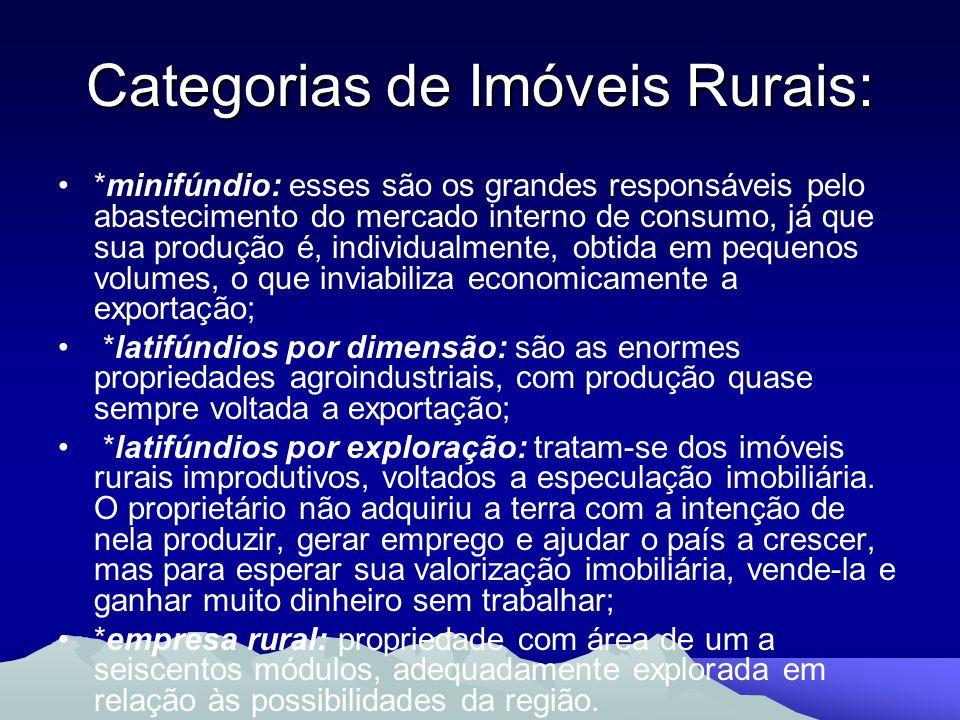 Categorias de Imóveis Rurais: *minifúndio: esses são os grandes responsáveis pelo abastecimento do mercado interno de consumo, já que sua produção é,