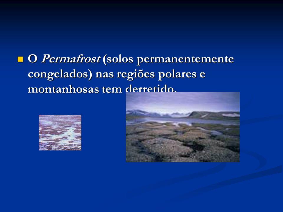 O Permafrost (solos permanentemente congelados) nas regiões polares e montanhosas tem derretido. O Permafrost (solos permanentemente congelados) nas r