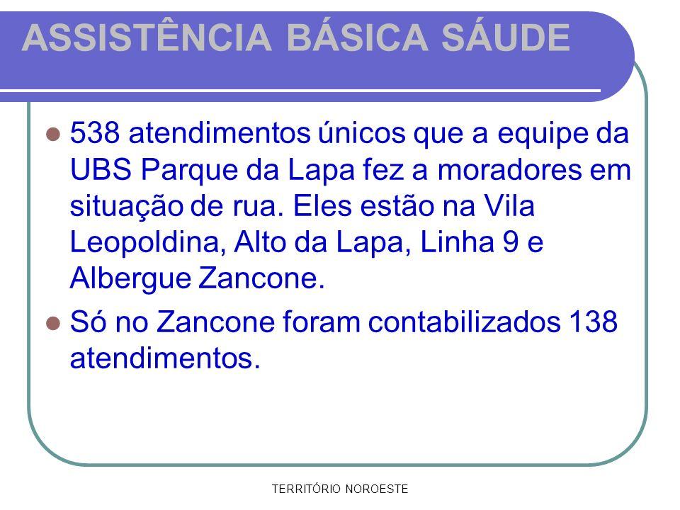TERRITÓRIO NOROESTE ASSISTÊNCIA BÁSICA SÁUDE 538 atendimentos únicos que a equipe da UBS Parque da Lapa fez a moradores em situação de rua. Eles estão