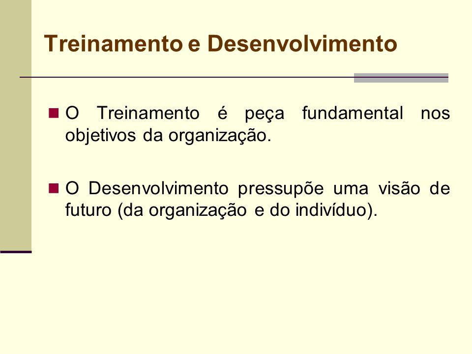 Treinamento e Desenvolvimento O Treinamento é peça fundamental nos objetivos da organização. O Desenvolvimento pressupõe uma visão de futuro (da organ
