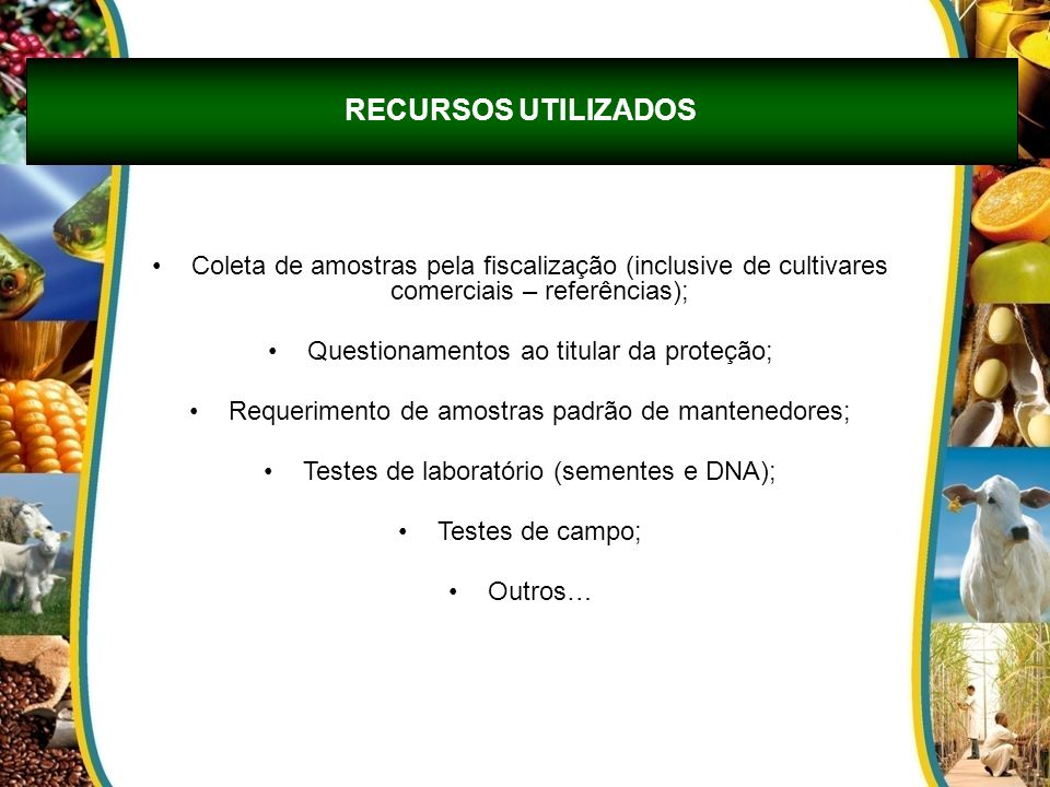 Coleta de amostras pela fiscalização (inclusive de cultivares comerciais – referências); Questionamentos ao titular da proteção; Requerimento de amost