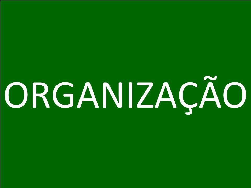 Programa de Incentivo Herbalife: FORTALEÇA SUA ORGANIZAÇÃO ORGANIZAÇÃO