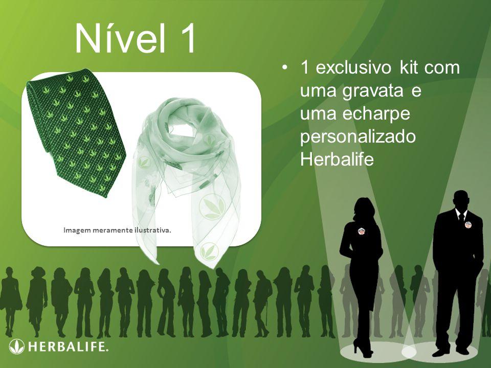 Nível 1 1 exclusivo kit com uma gravata e uma echarpe personalizado Herbalife Imagem meramente ilustrativa.