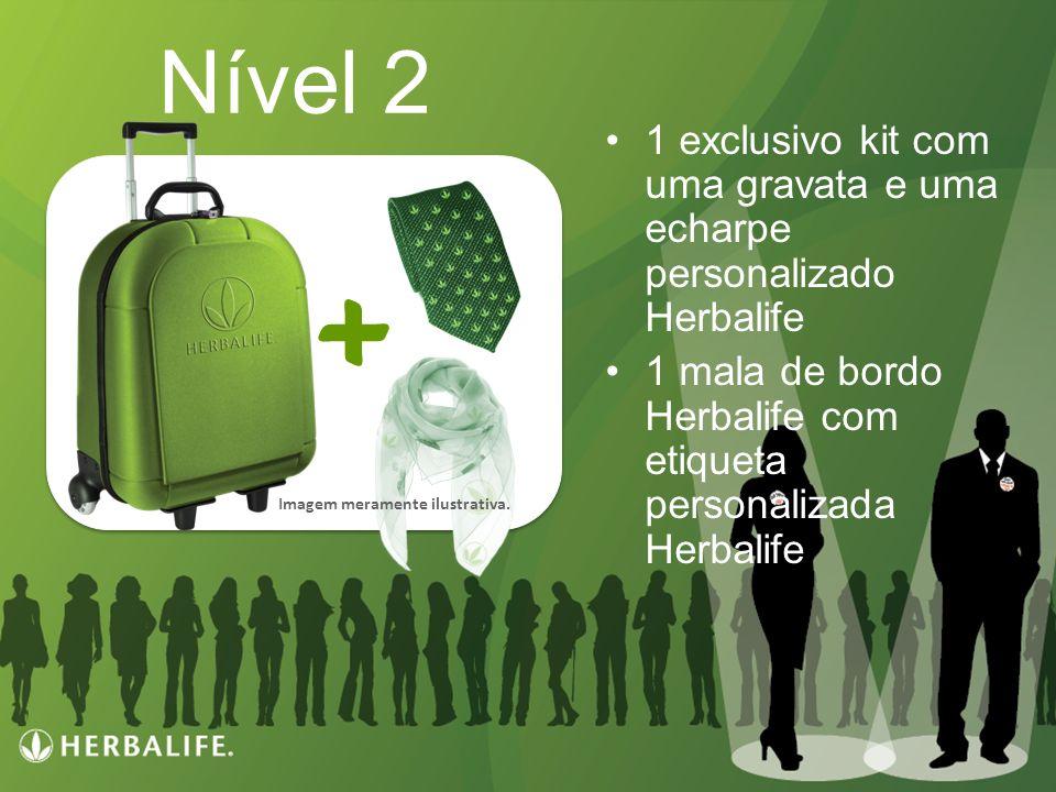 Programa de Incentivo Herbalife: FORTALEÇA SUA ORGANIZAÇÃO Nível 2 1 exclusivo kit com uma gravata e uma echarpe personalizado Herbalife 1 mala de bor